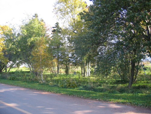 Showing cemetery amid trees near roadway